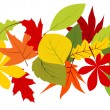 Seamless border with autumn leaves - Stock Vector