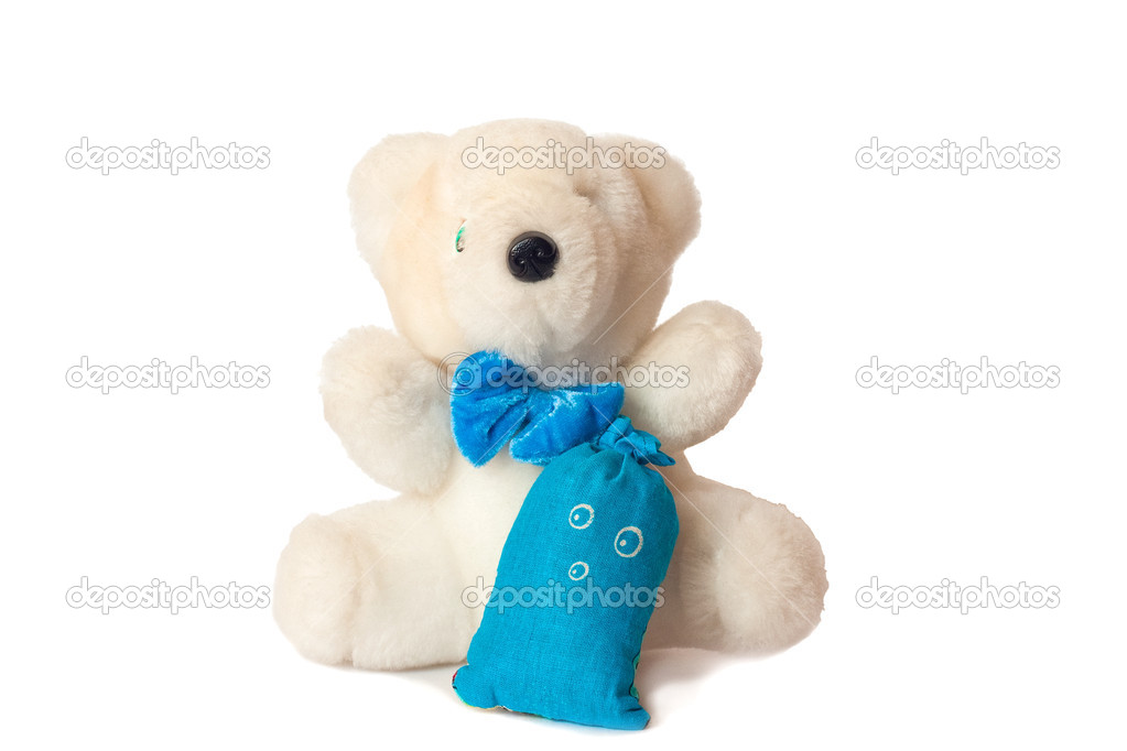 Baby bear with a little gift  Stock Photo #6466191