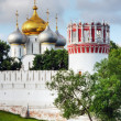 View of the Smolensk Cathedral of Novodevichy Convent — Stockfoto