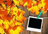 Best moments of golden autumn — Stock Photo