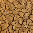 Dry soil background - Stock Photo