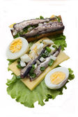The Estonian national sandwich 6 — Stock Photo