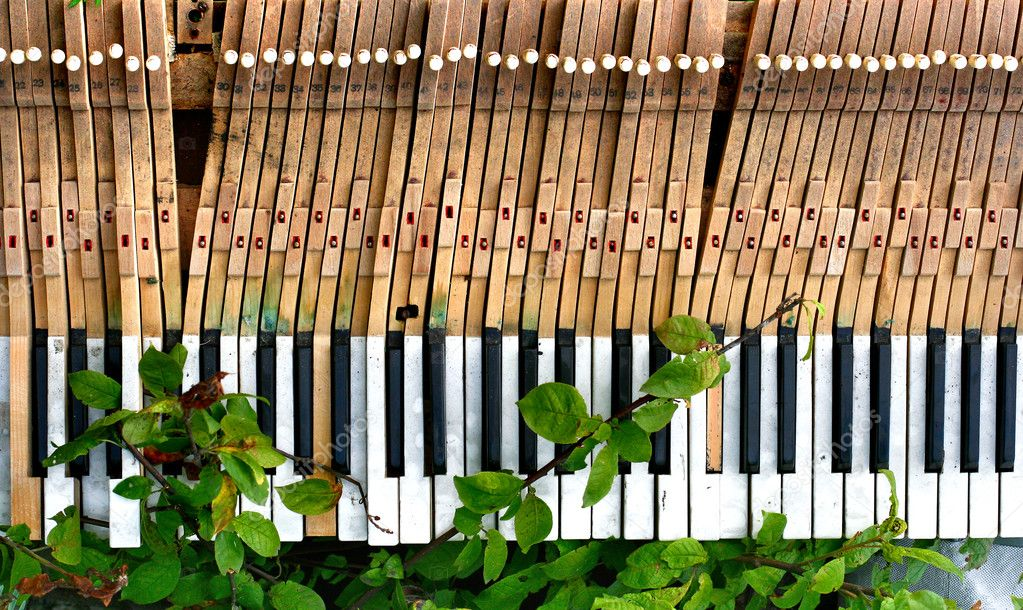 Old and broken piano in green foliage — Stock Photo #5736837