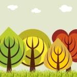 Four season trees concept — Stock Photo