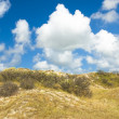 Landscape with dunes, shrubs and clouds — Stock Photo