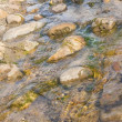 Small stream in summer - Stock Photo