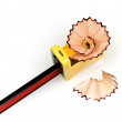 Pencil, Sharpener and Sharpening Shavings — Stock Photo