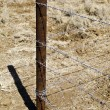 Barbed wire fence — Stock Photo #6417859