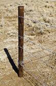 Clôture en fil de fer barbelé — Photo