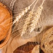 Fresh bread with ear of wheat — Stock Photo