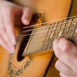 The woman plays an acoustic guitar - Stock Photo