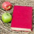 The book and apples on a dry grass - Zdjęcie stockowe