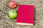 The book and apples on a dry grass — 图库照片
