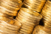 The golden coins close up background — Stock Photo