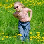 Постер, плакат: The little beautiful girl collects dandelions