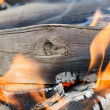 Very hot campfire close up — Stock Photo