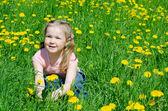Het mooie meisje verzamelt paardebloemen — Stockfoto
