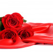Red rose isolated on a white — Stock Photo #6141227