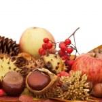 秋の葉や果物の分離 — ストック写真