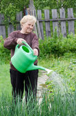 The elderly woman works on a kitchen garden — Stock Photo