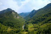 Montenegro. Mountains. Tara river canyon — Stock Photo