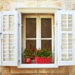 Old Shutter windows with flowers. Montenegro — Stock Photo #6655588