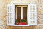 Old Shutter windows with a flowers. Montenegro — Stock Photo