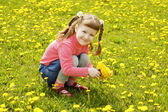 Cute little girl on the meadow — Foto de Stock