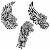 Set of wings — Stockvektor