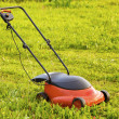 Lawn mower — Stock Photo #6150042