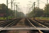 Railway — Photo