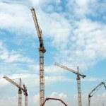 Cranes — Stock Photo #5555829