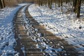 Dirtroad with snow in winter — Stock Photo