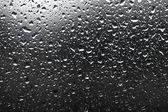 Krople deszczu — Zdjęcie stockowe