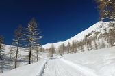 Paesaggio alpino invernale — Foto Stock