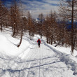 Woman snowshoeing descending - Stock Photo