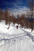 Woman snowshoeing descending — Stock Photo