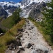 Stock Photo: Trail to Monte Rosa
