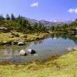 Summer Alpine lake view — Stock Photo