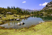 Summer Alpine lake view — Stock Photo