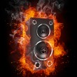 Stock Photo: Acoustic Loudspeaker