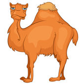 Cartoon Character Camel — Stock Vector