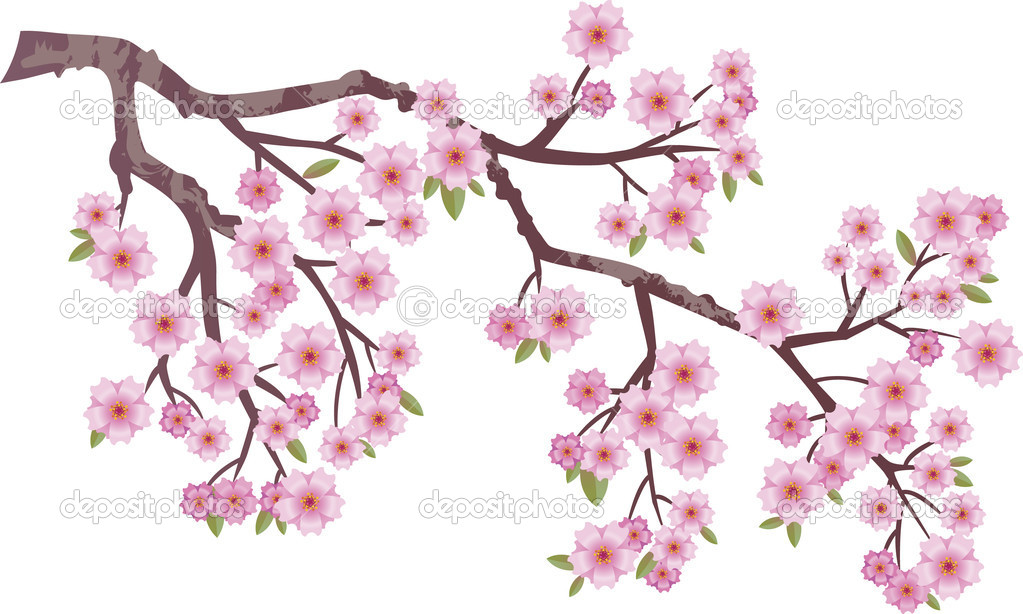 Oriental cherry branch with flowers — Stock Vector #5659420