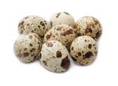 Eggs quail — Stock Photo