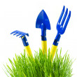 Garden tools in  green grass - ストック写真