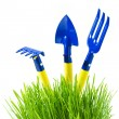 Stock Photo: Garden tools in green grass
