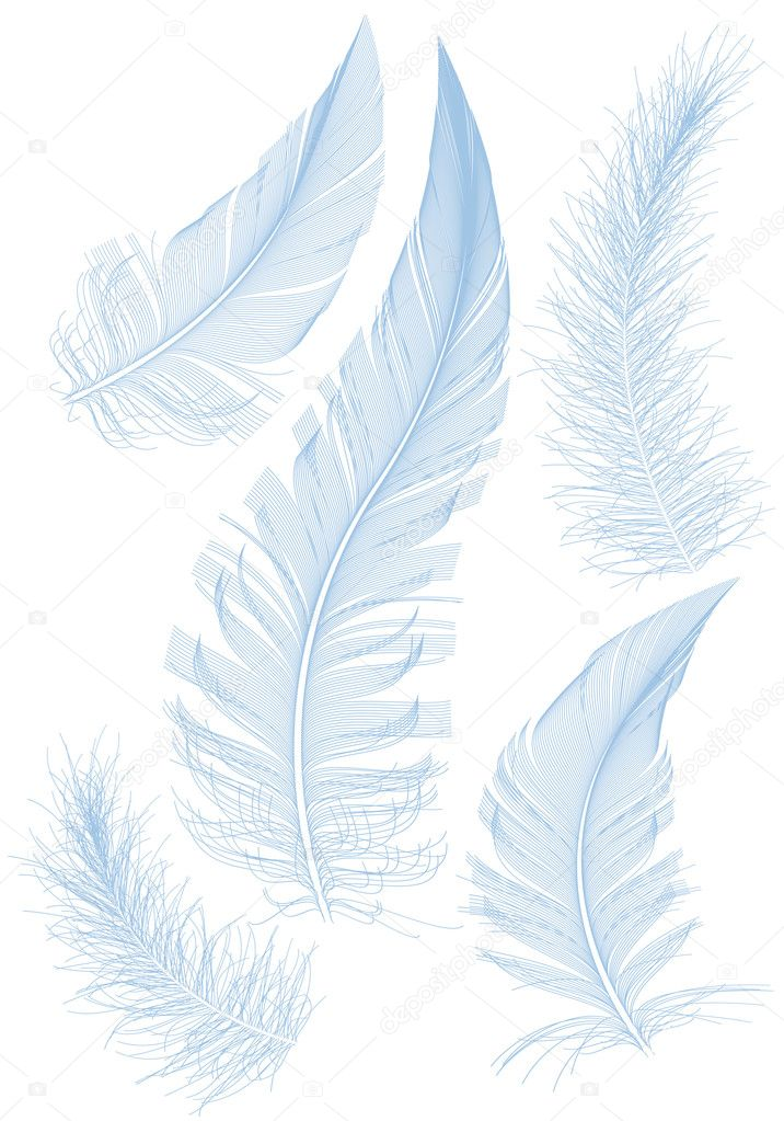Set of smooth blue feather, vector — Stok Vektör #5851391