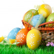 Royalty-Free Stock Photo: Color easter eggs with green grass on the white
