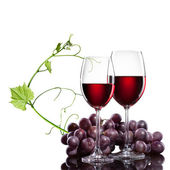 Red wine in glasses with grape and rod isolated on white — Stock Photo