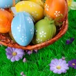 Stock Photo: Color easter eggs in basket on the green grass